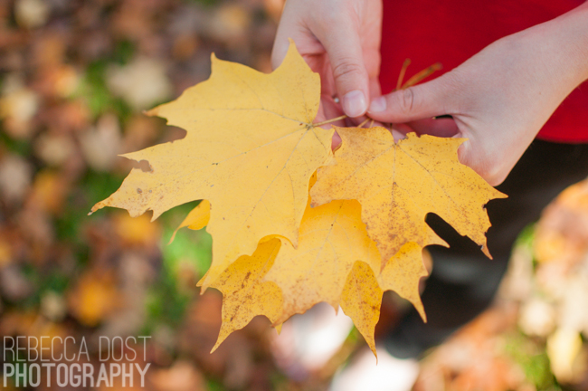 Rebecca Dost Photography: Autumn